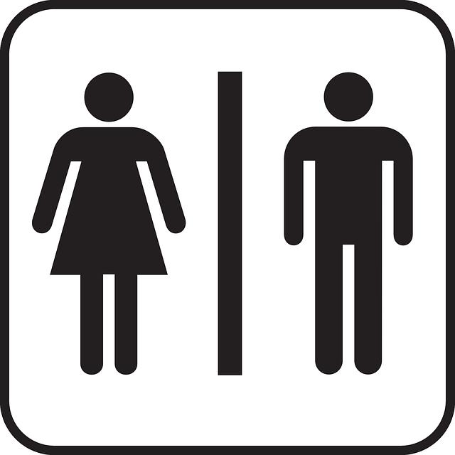 Desentupidora Curitiba – Os fatos mais curiosos sobre banheiros
